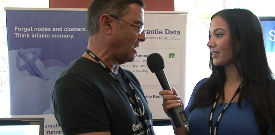 Garantia Data cofounder and CEO Ofer Bengal says Redis is one of the fastest growing databases in the NoSQL space