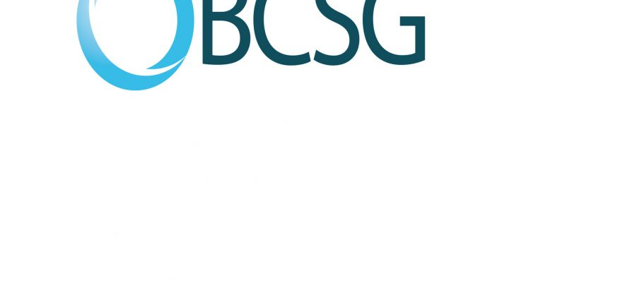 BCSG says new partnership will bring applications to small businesses in new ways