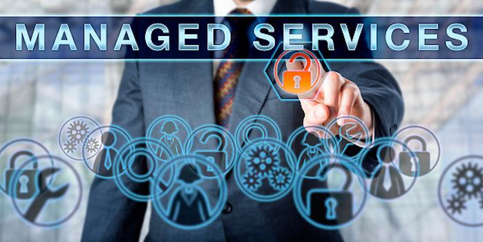 Building a Services Culture