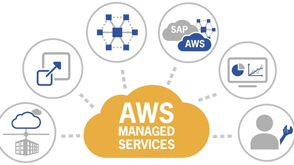 Live Reaction Industry Speaks Out About AWS Managed Services