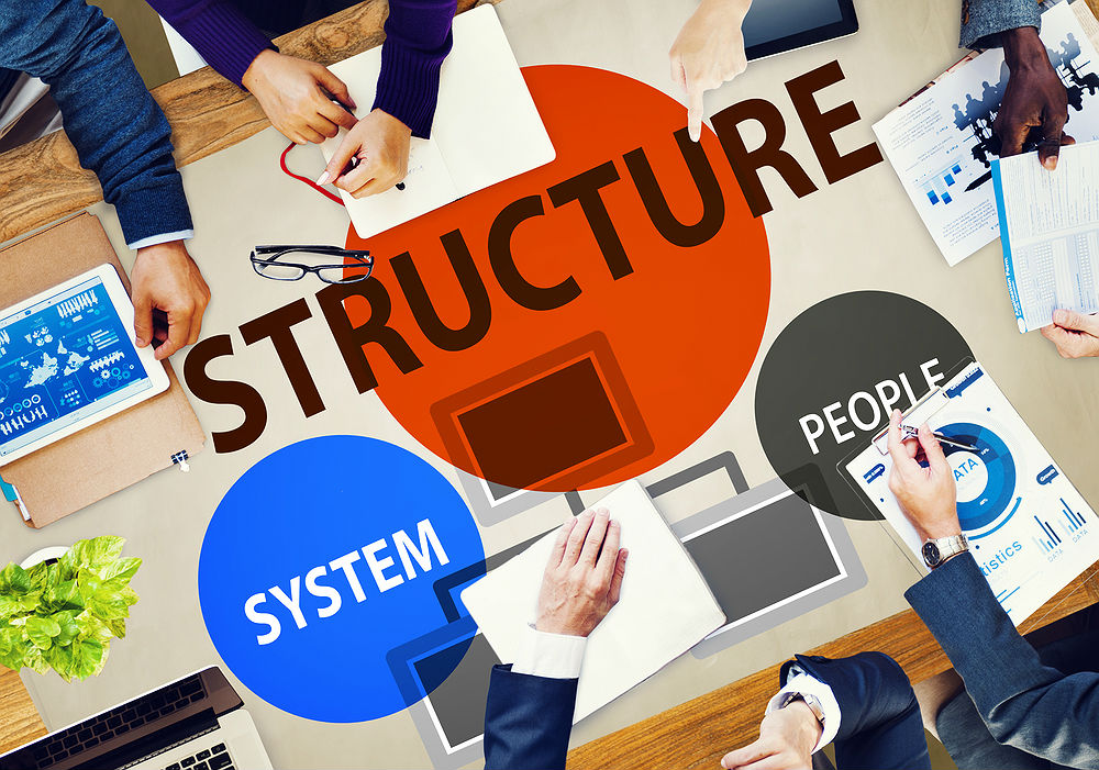 Business Structure and Organization