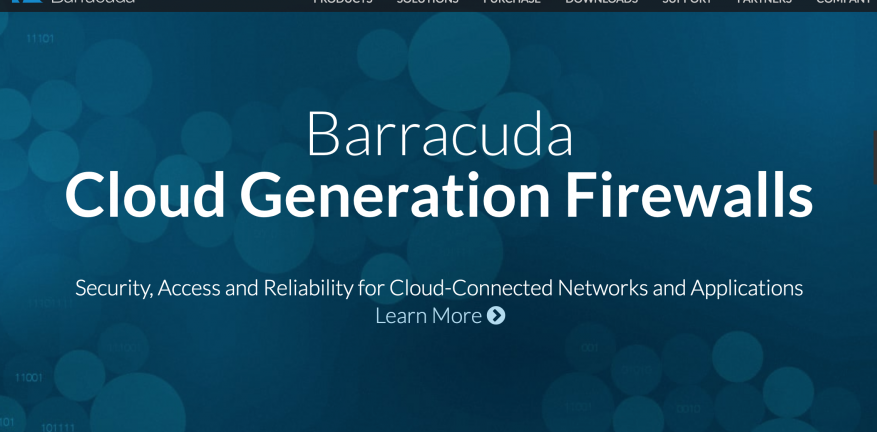 Barracuda Networks Website Screengrab