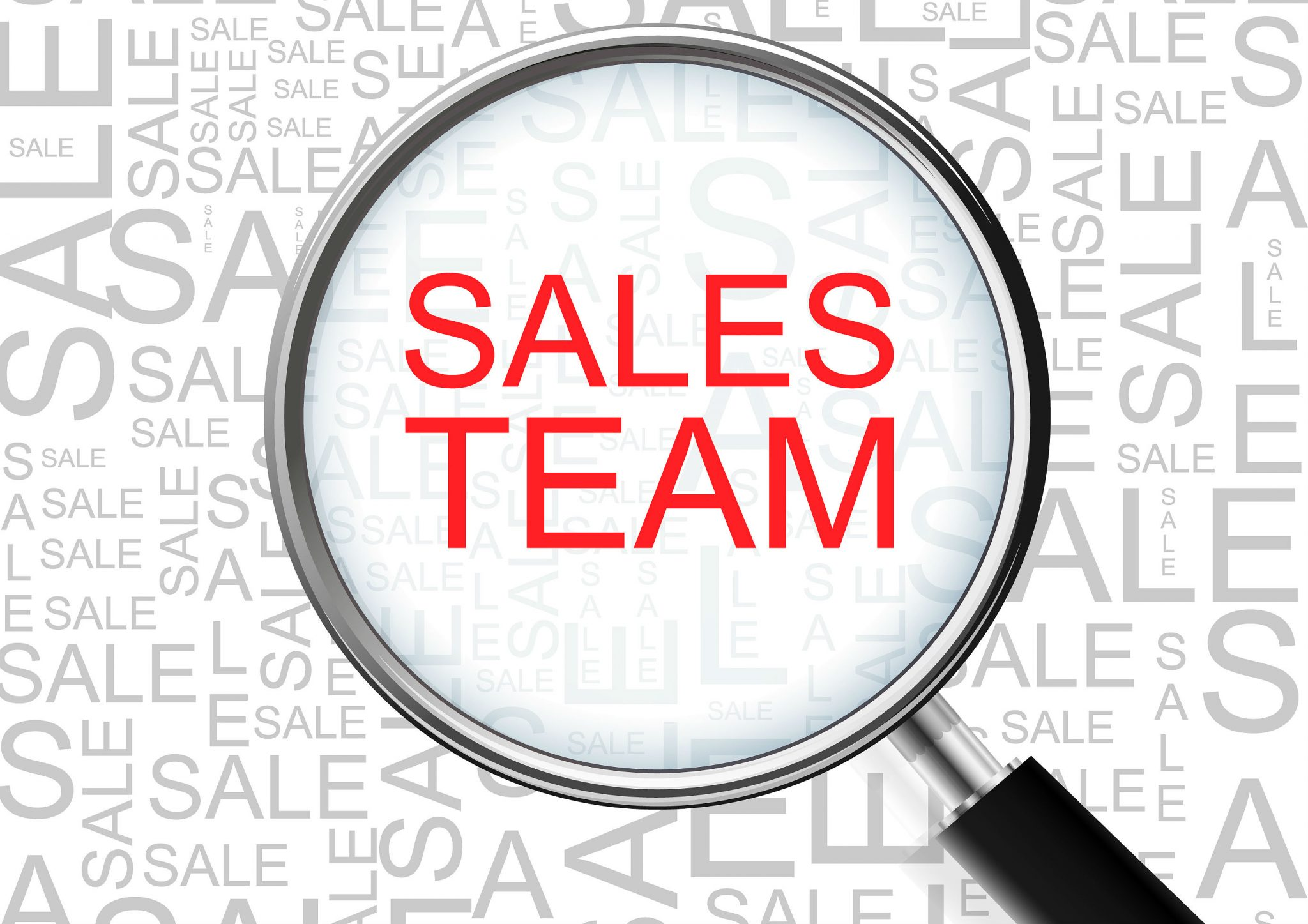 The Competencies and Values You Need to Lead Your Sales Team