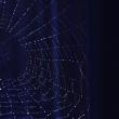Web on a dark background