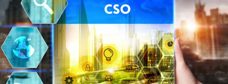 Chief Strategy Officer_CSO