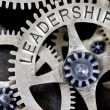Leadership - gear in machine