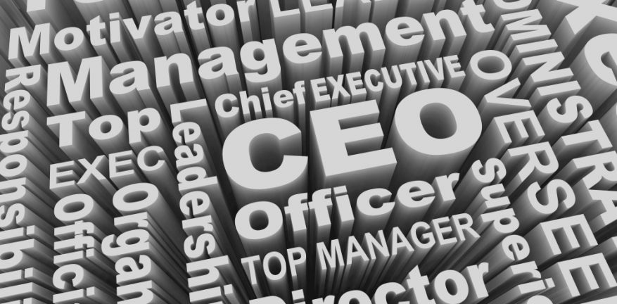 CEO and related words