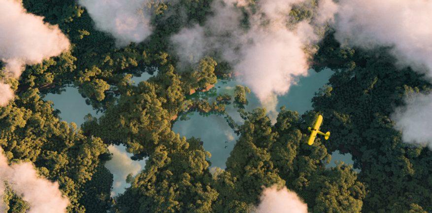 Rain Forest, Sustainability