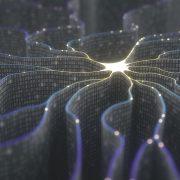 Network AI