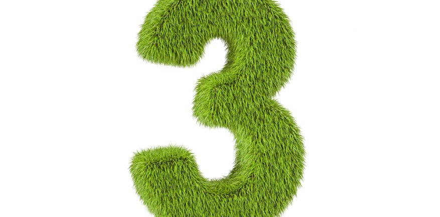 Number 3 Made of Grass